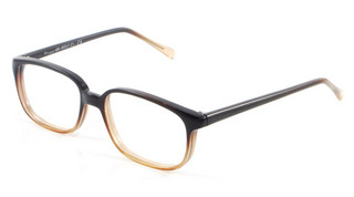 Maryport - Mens Brown glasses