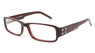 New York - Womens Latest Trends glasses